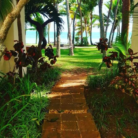 Chemin qui mène à la plage...